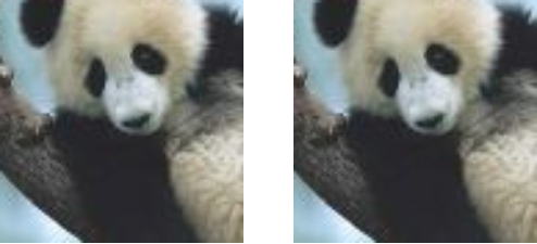 pandas adversarial example