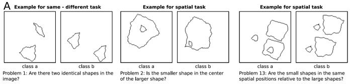 SVRT example