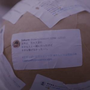 カルピスの七夕CM「打ちあがれ初恋花火」女優、小高サラさんの浴衣姿が眩しい