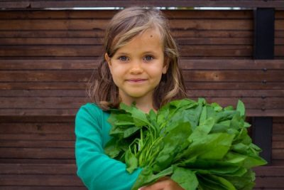 Foods for Eye Health that Children Love