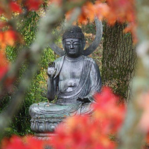 Buddha statue in Batsford Arboretum