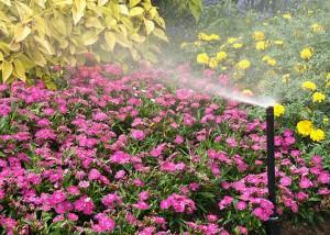 Flower irrigation system