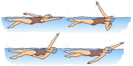 backstroke2