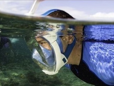 best snorkel mask full face review
