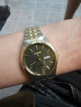 Seiko Men's SNE042 Stainless Steel Solar Watch review