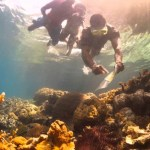 Snorkelers Paradise – 5 Of The Best Beaches In Papua New Guinea