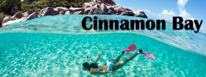 cinnamon bay us virgin islands