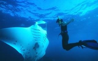 fethiye-turkey-snorkeling