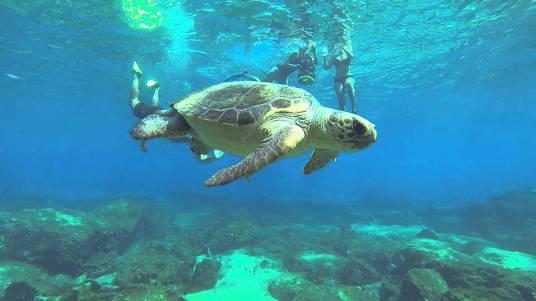 snorkeling-in-fethiye-turkey