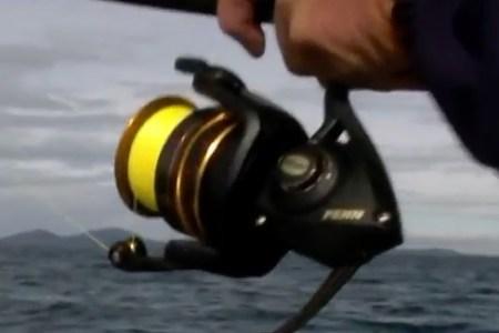 Penn Battle II Fishing Reel