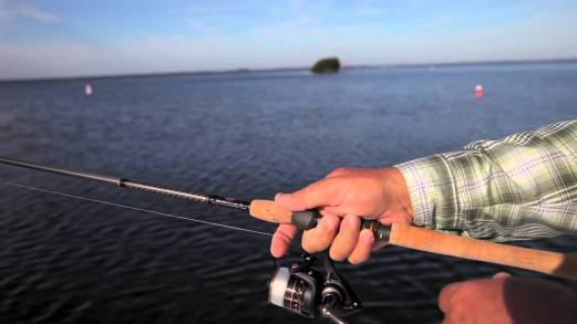 best spinning reels review