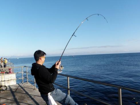 reeling in fish on the line