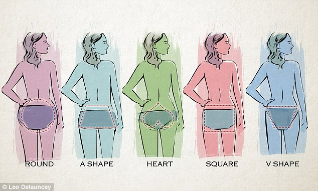 different women's butt shapes