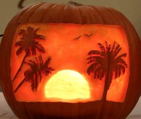 Tropical Palm Tree Carved Pumpkin