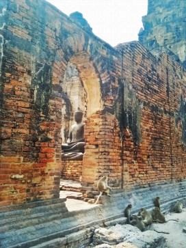lopburi bangkok day trip