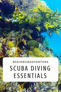 scuba dive packing guide