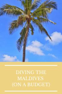 pin me to pinterest diving in the Maldives on a budget