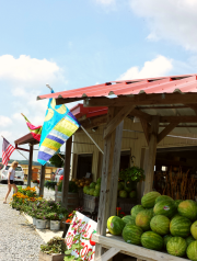 Emily's Produce, Church Creek Road, Dorchester County MD
