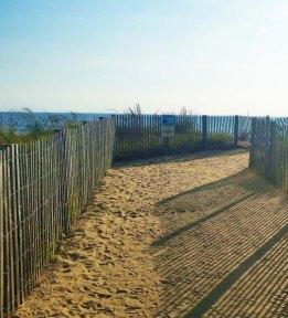 ocean-city-dunes