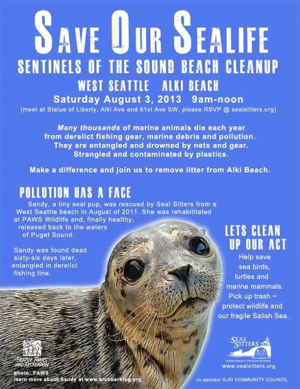 Sandy - Beach cleanup 2013