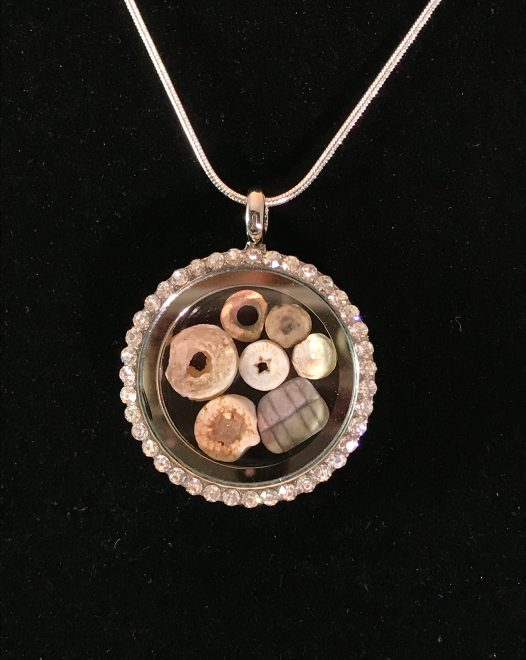 Magnetic Locket with Fossils