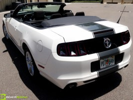 Ford Mustang Striping in Ormond Beach