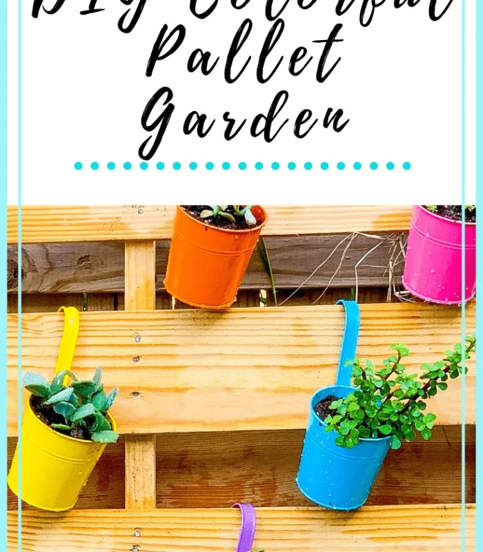 DIY Colorful Pallet Garden