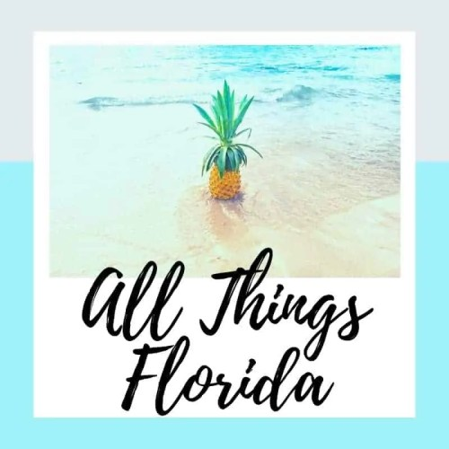 All Things Florida