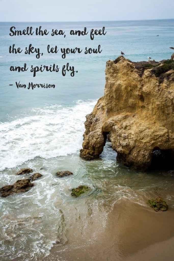 beach life quotes inspirational