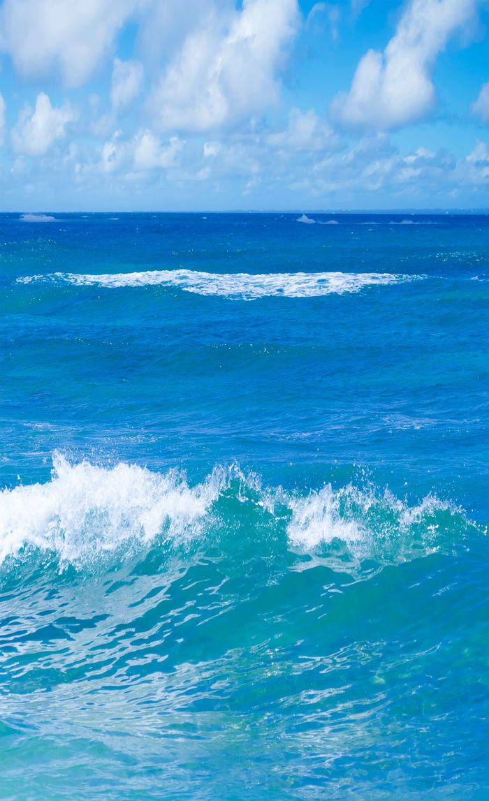 Blue Tropical Ocean Window Curtain Blackout Curtain Sheer Curtain Coastal Curtain Nautical