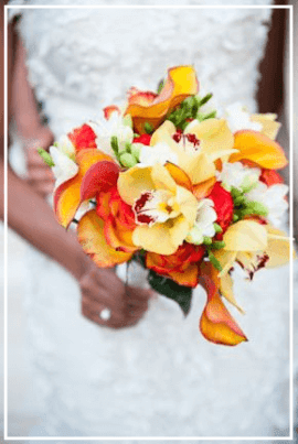 Aloha Maui Wedding Planners & Specialist - Wedding Packages