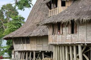 Traditional wooden house with thatched roof on Nias Island, Indonesia