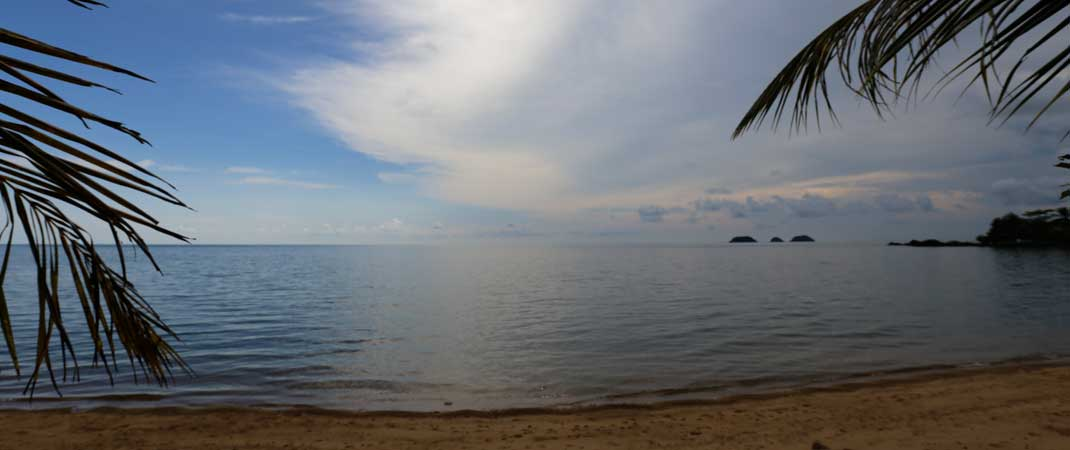 Beautiful beach in Thailand with a sandy beach, palms and the sea