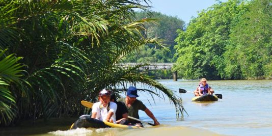 Two kayaks with tourists paddling in the mangroves of Takua Pa (ตะกั่วป่า) in Phang Nga Province.