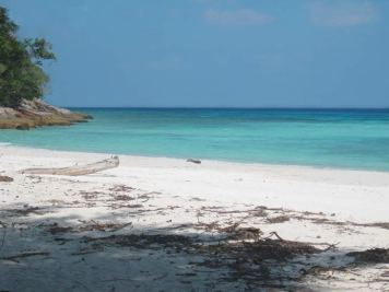 White sand castaway beach with clear blue water in Thailand