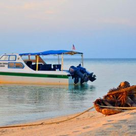 Small passenger boat bringing travelers to Selingan Turtle Island in the Sulu Sea of Borneo. Photo by Beachmeter.com.
