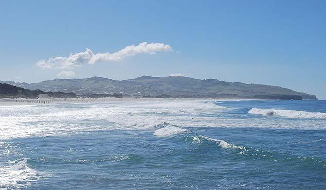 St Clair beach Dunedin New Zealand