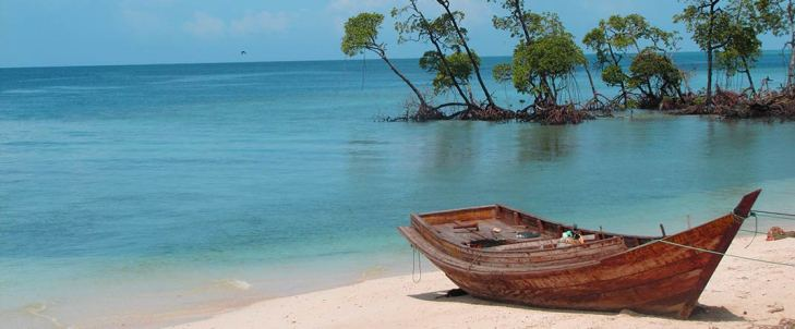 Wooden boat on one of the beaches in India
