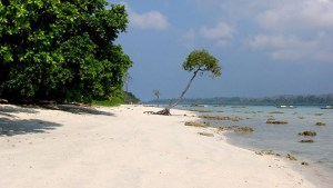 Lonely beach on Havelock Beach, Swaraj Island