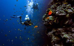 two scuba divers in Thailand