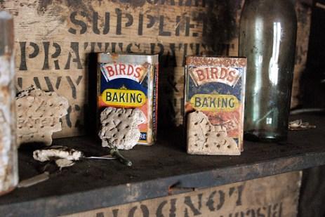 Birdsbaking