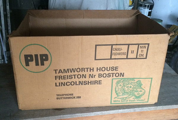 PIP-cauliflowers-box