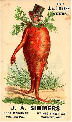 Carrot man_nullalux