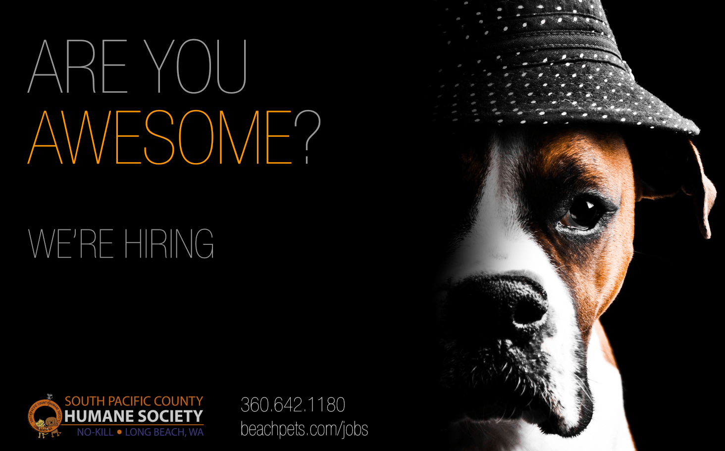 WERE HIRING South Pacific County Humane Society