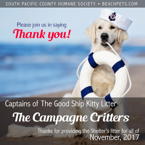 Captain Of The Good Ship Kitty Litter For November 2017
