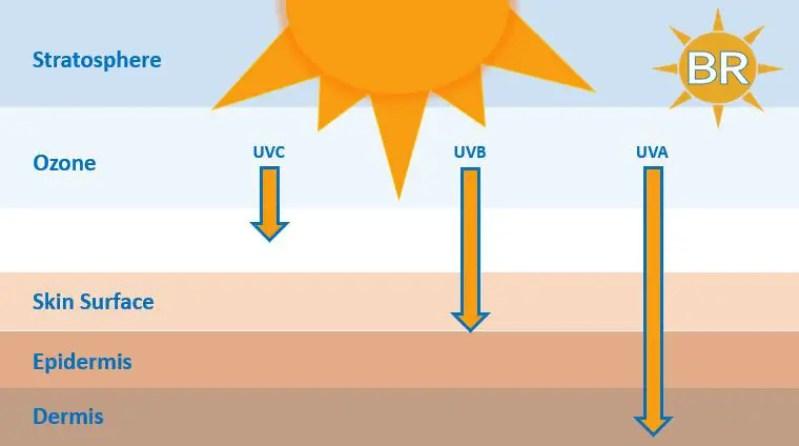 UVA Rays