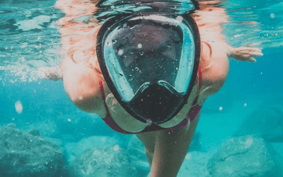 Full Face Snorkel Mask Picture