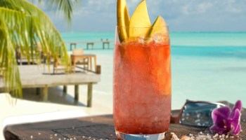 THE 5 Tropical Drinks