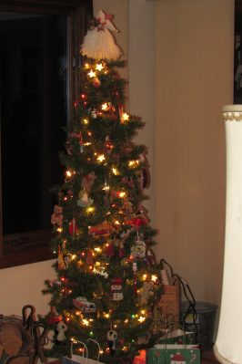 Our small tree. Affectionately nicknamed the teddy bear tree. Full of little teddy bears among other things.