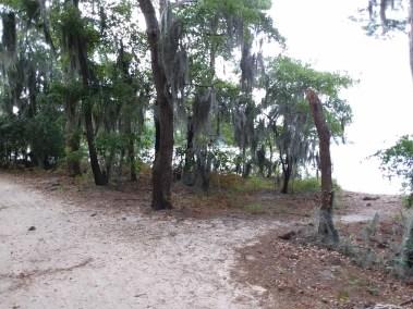 Va Beach First Landing State Park (18)